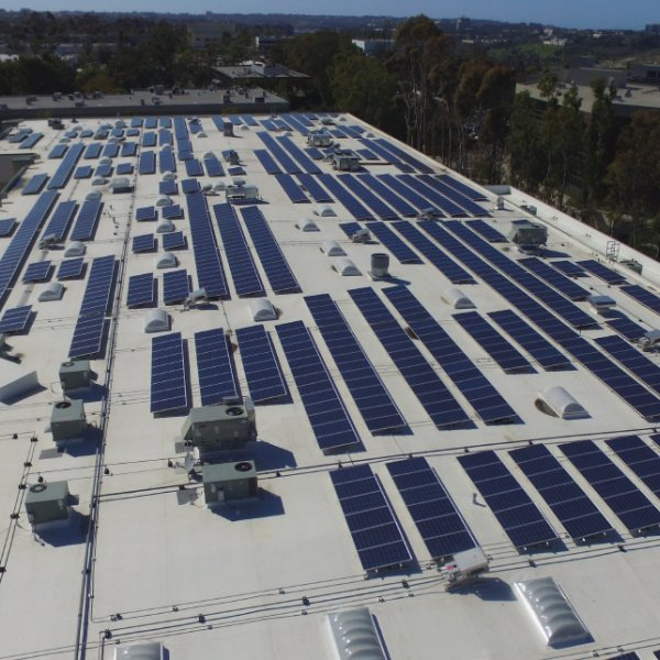 The Jacobs & Cushman San Diego Food Bank commercial solar project